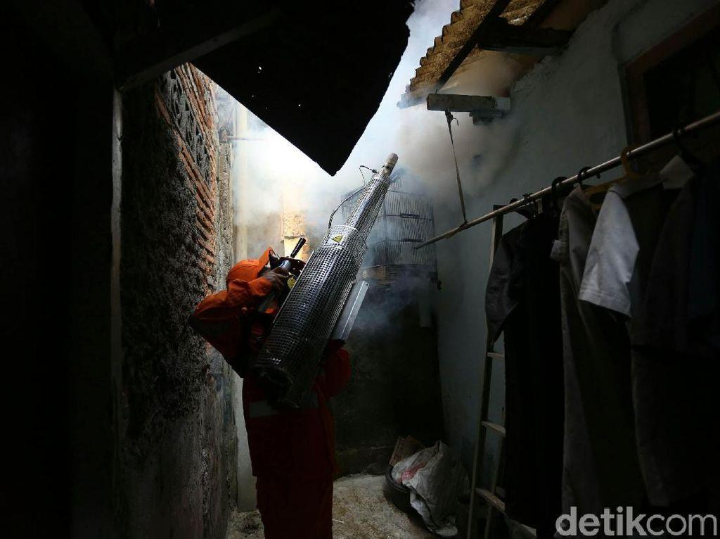 Aksi Heroik Petugas Memberantas Nyamuk Penyebab DBD