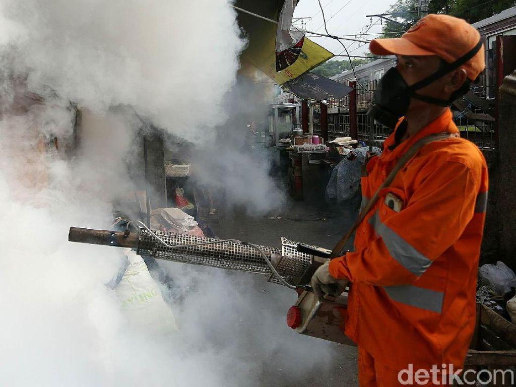 Ketua MPR Juga Kena DBD, Bukti Nyata Nyamuk Bisa Gigit Siapa Saja