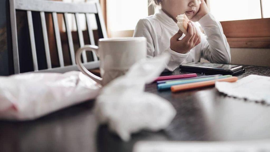 Bikin Gemas, Ketika Bjorka Anak Ringgo Saat Cicip Telur dan Apel