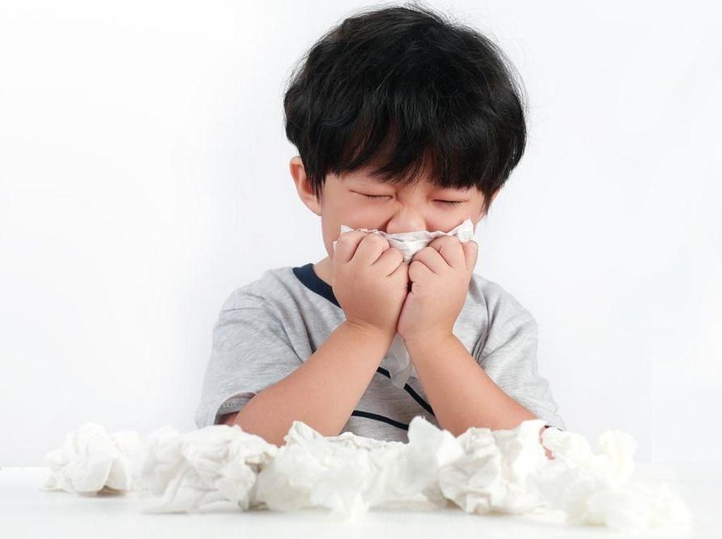 Kabut Asap hingga Polusi Udara Bisa Jadi Faktor Alergi Anak