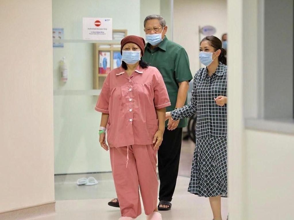 Seperti Kanker Darah Bu Ani, Penyakit Ini juga Butuh Donor Sumsum Tulang