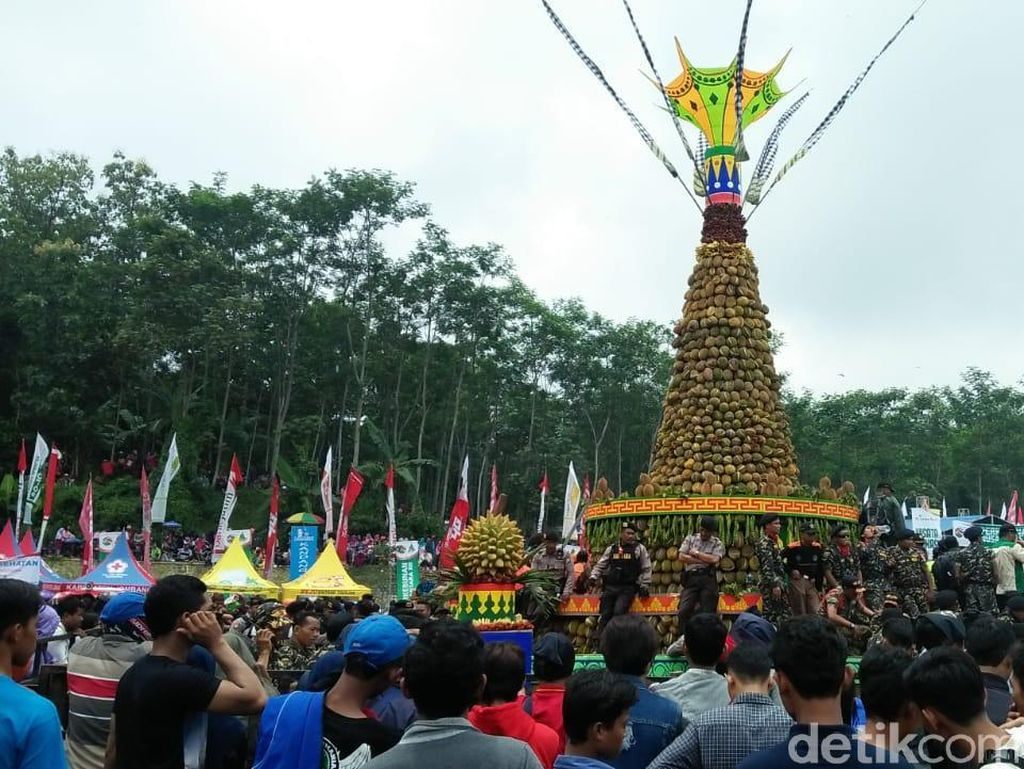 Ribuan Warga Berebut Gunungan Raksasa Isi 2019 Durian di Jombang