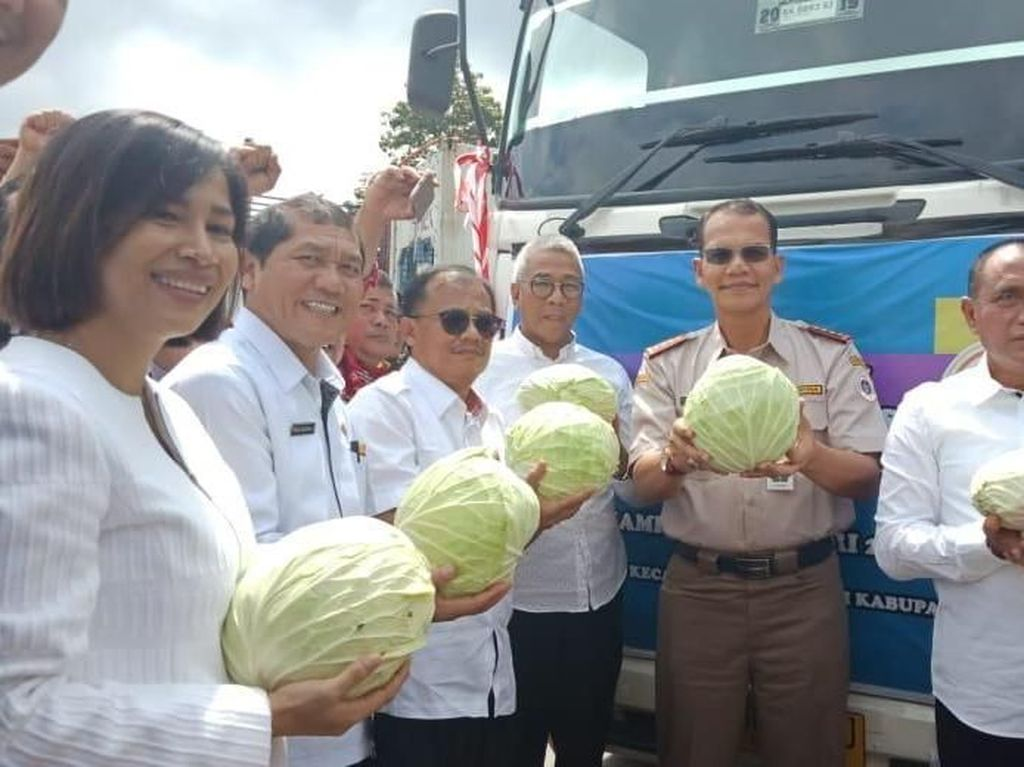 Kementan Lepas Ekspor 25 Ton Kol Berastagi ke Malaysia