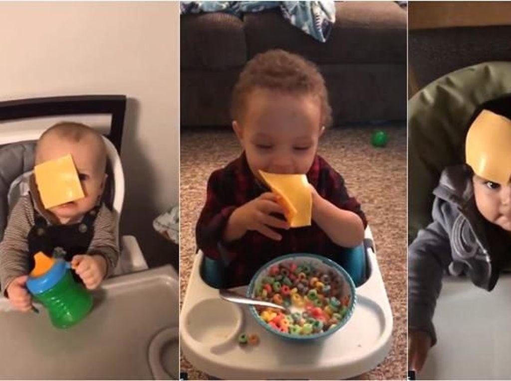 Tren Video Lempar Keju ke Wajah Bayi Jadi Viral di Media Sosial