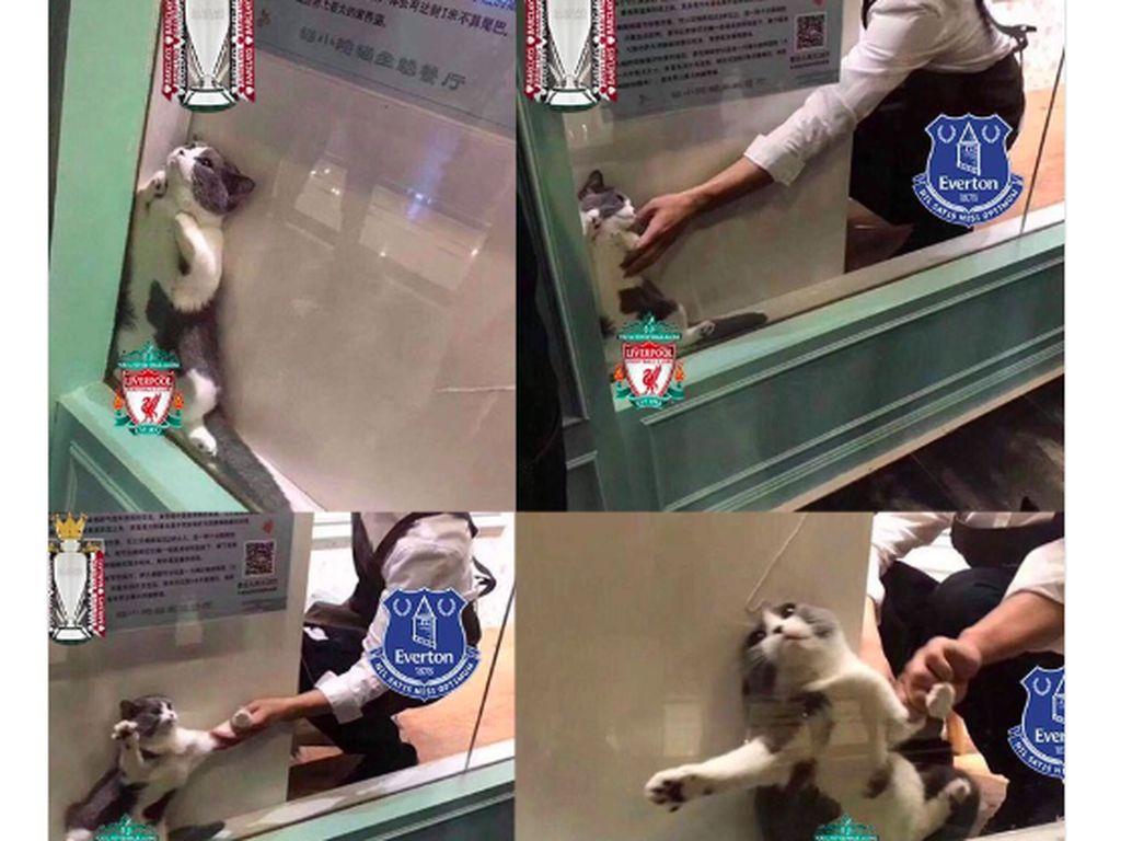 Meme Liverpool Terancam Gagal Juara (Lagi)