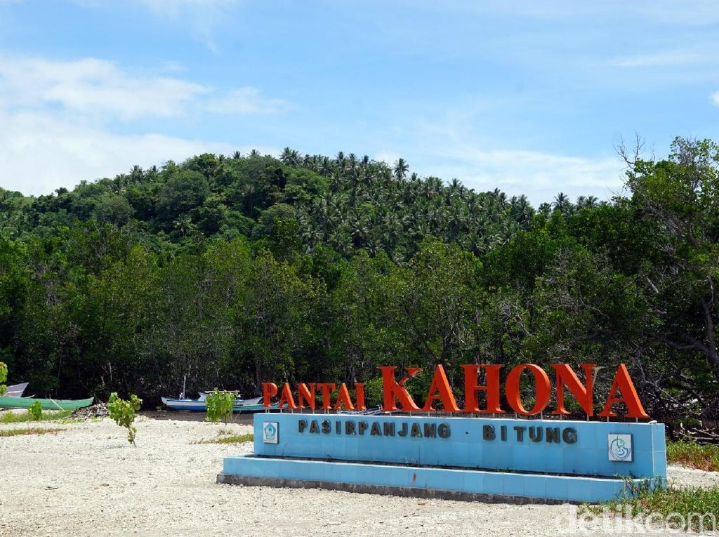 Foto: Indonesia Punya Surga di Pulau Lembeh
