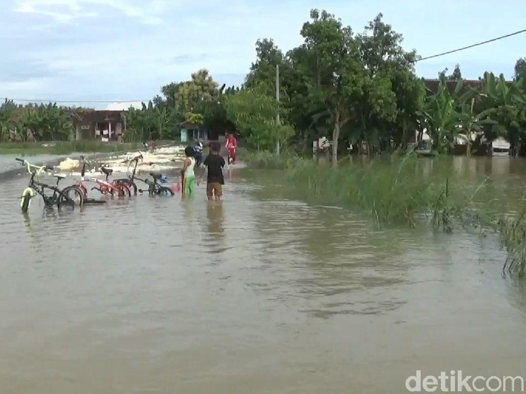 Tanggul Luar Bengawan Solo Jebol, Puluhan Hektare Sawah Terendam