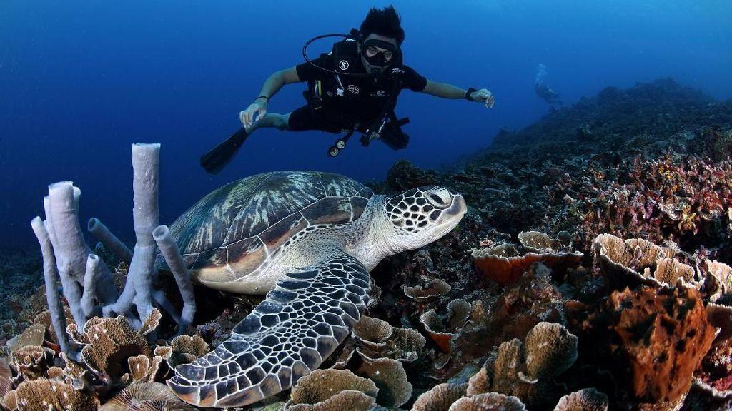 Foto yang Bikin Kamu Ingin Liburan ke Lombok