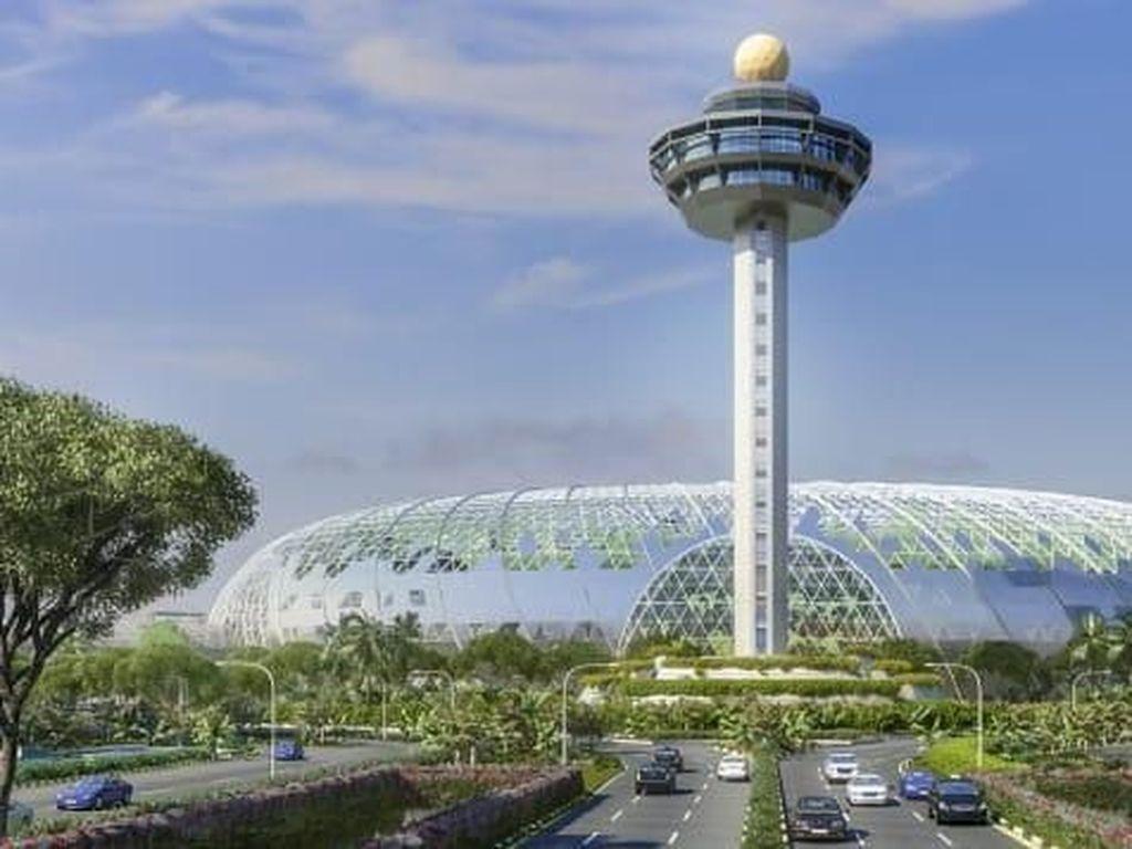 Singapura Siaga Corona, RI Setop Penerbangan?