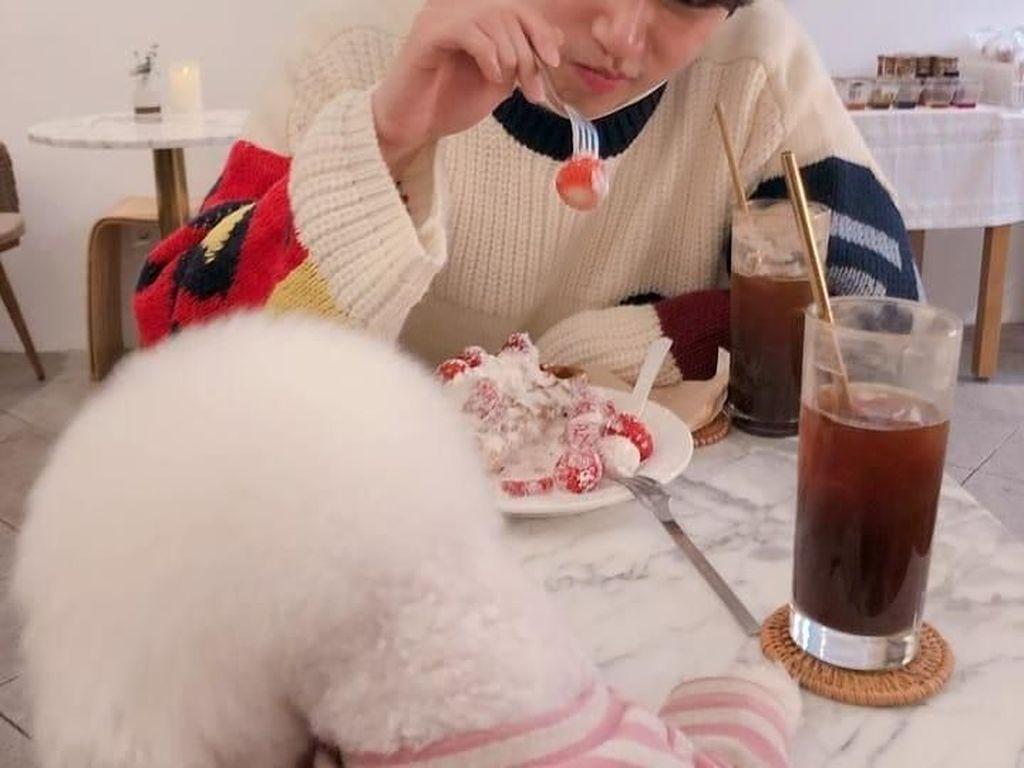 Ternyata Aktor Keren Oh Seung-yoon Doyan Junk Food dan Beefsteak