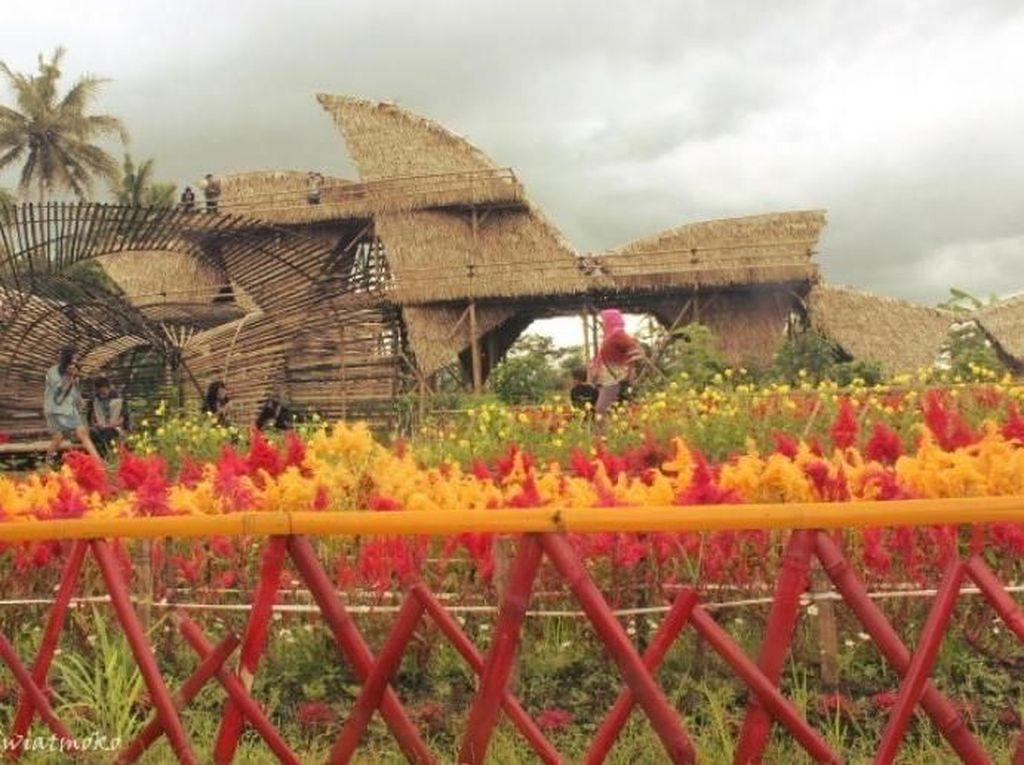 Magelang Tak Cuma Borobudur