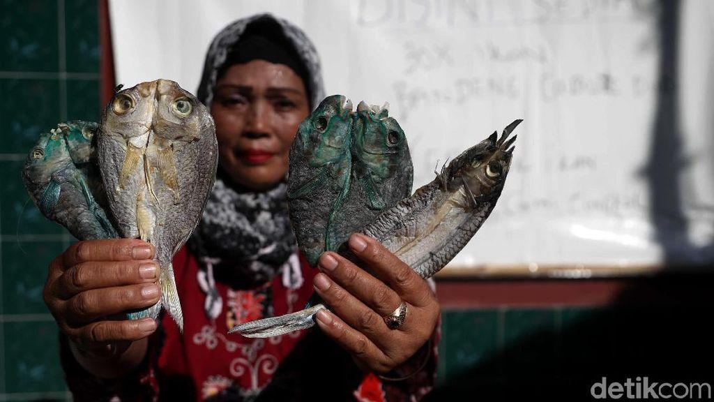 Geliat Usaha Ikan Asin di Pulau Pramuka