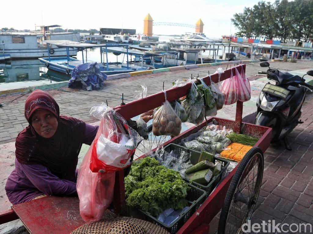 Memetik Rezeki Lewat Buah dan Sayur di Pulau Pramuka