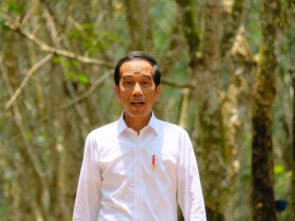 Jokowi Tinjau Proses Rekonstruksi Rumah Tahan Gempa di NTB