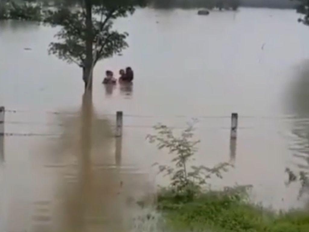 Video Dramatis! Pengendara Selamatkan Korban Banjir di Tepi Tol