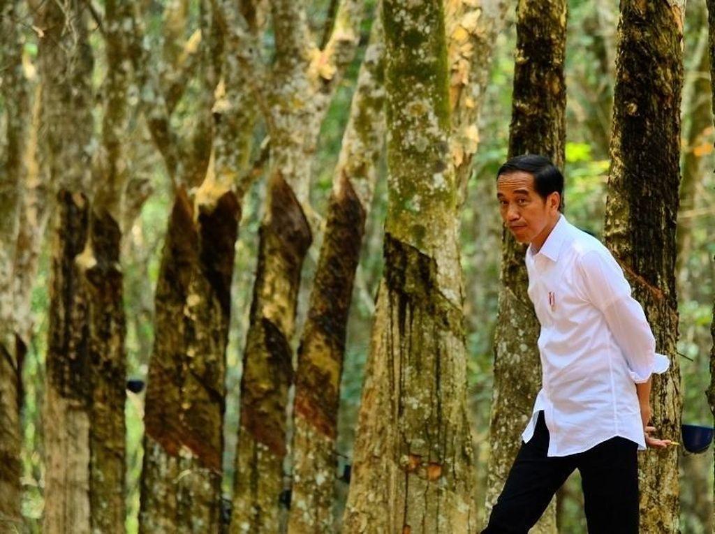 Nur Halimah Curhat soal Tanah, Jokowi: Segera Diselesaikan Lewat BPN