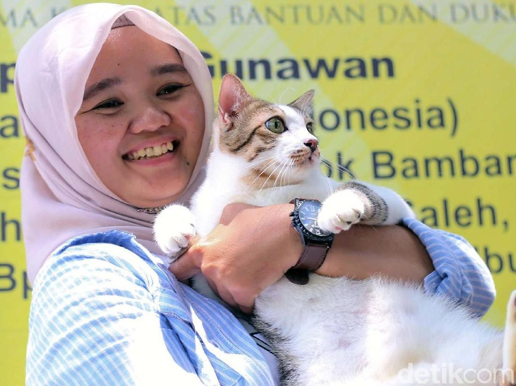 Video: Dulu Telantar, Siapa Sangka Bandi Jadi Juara Mirip Kucing Prabowo