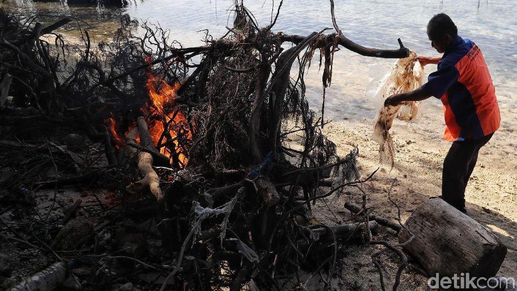 Aksi Petugas Bersihkan Sampah di Pulau Karya