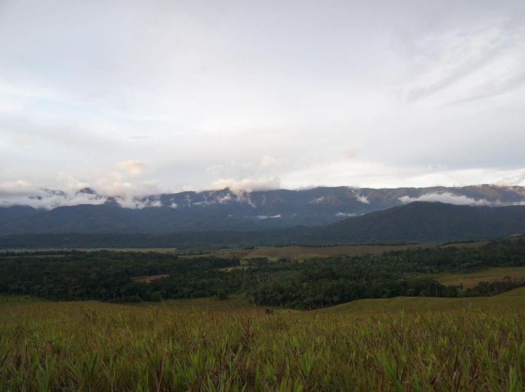Bukit Sontiri, Padang Hijau yang Punya Ribuan Jaring Laba-laba