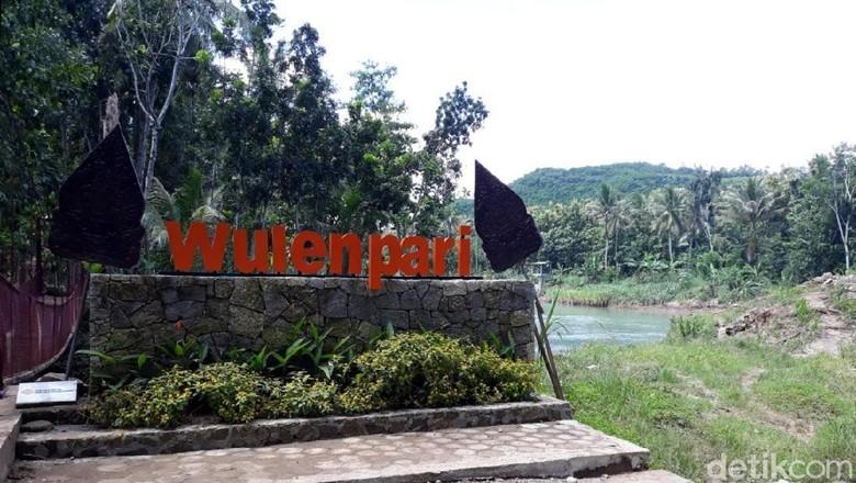Desa Wulenpari yang bodoh tapi asyik (Pradito Rida Pertana/detikcom)