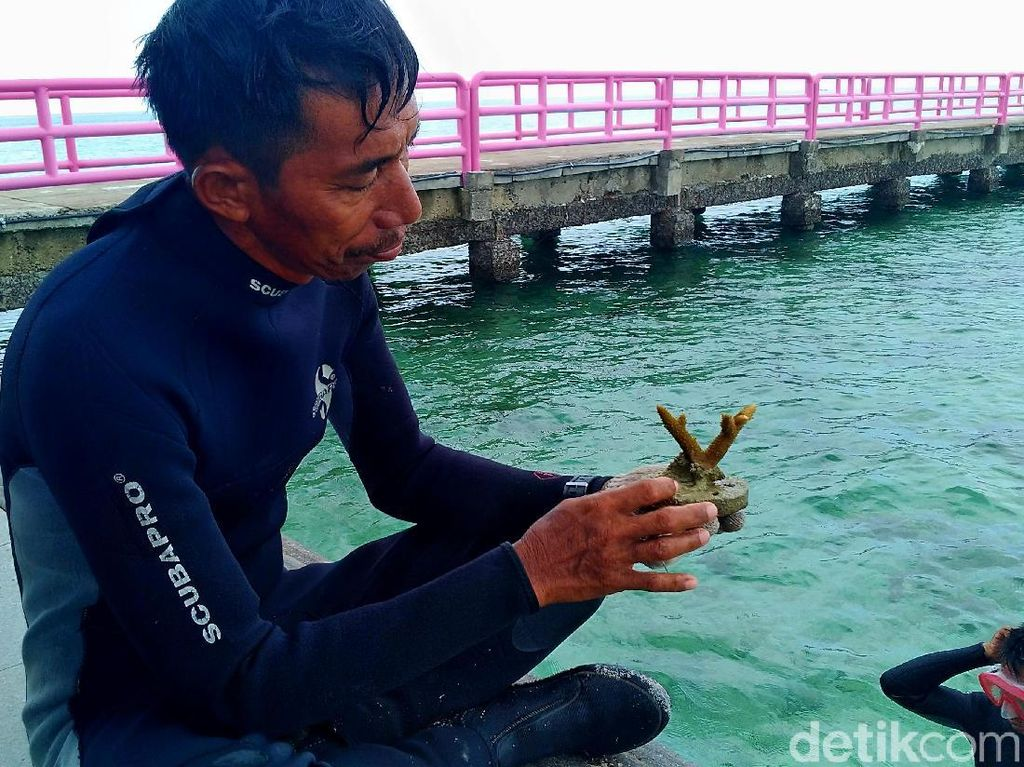 Erik Pelestari Terumbu Karang Pulau Tidung: Saya Dulu Dianggap Gila