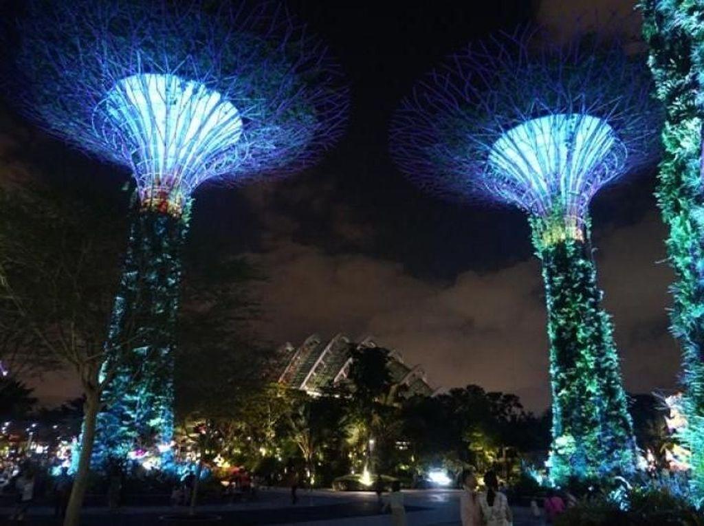 Foto: Saat Pohon Ajaib Singapura Menyala