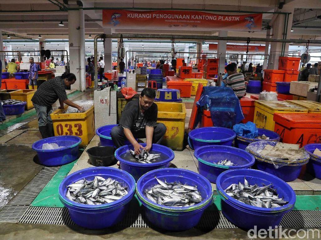 Keren dan Bersih! Pasar Ikan Modern Muara Baru yang Diresmikan Jokowi