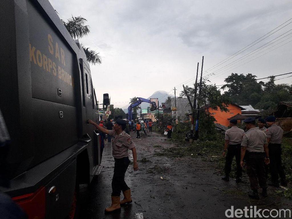 Pohon Tumbang Tutup Akses Jalan Kaliurang Sleman
