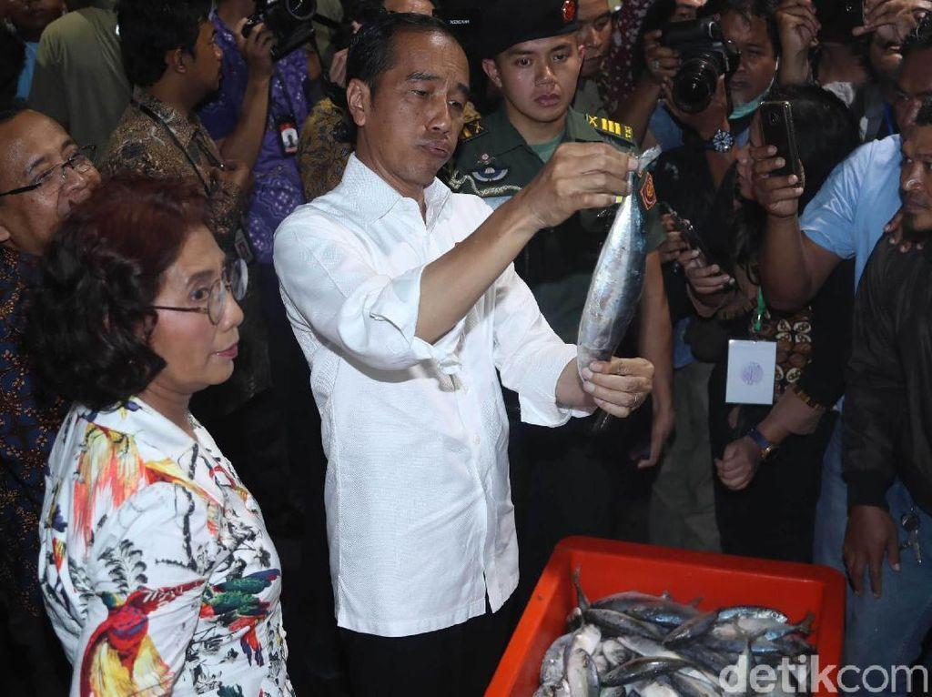 Kagumnya Jokowi Pada Pasar Ikan Muara Baru yang Seperti Tsukiji
