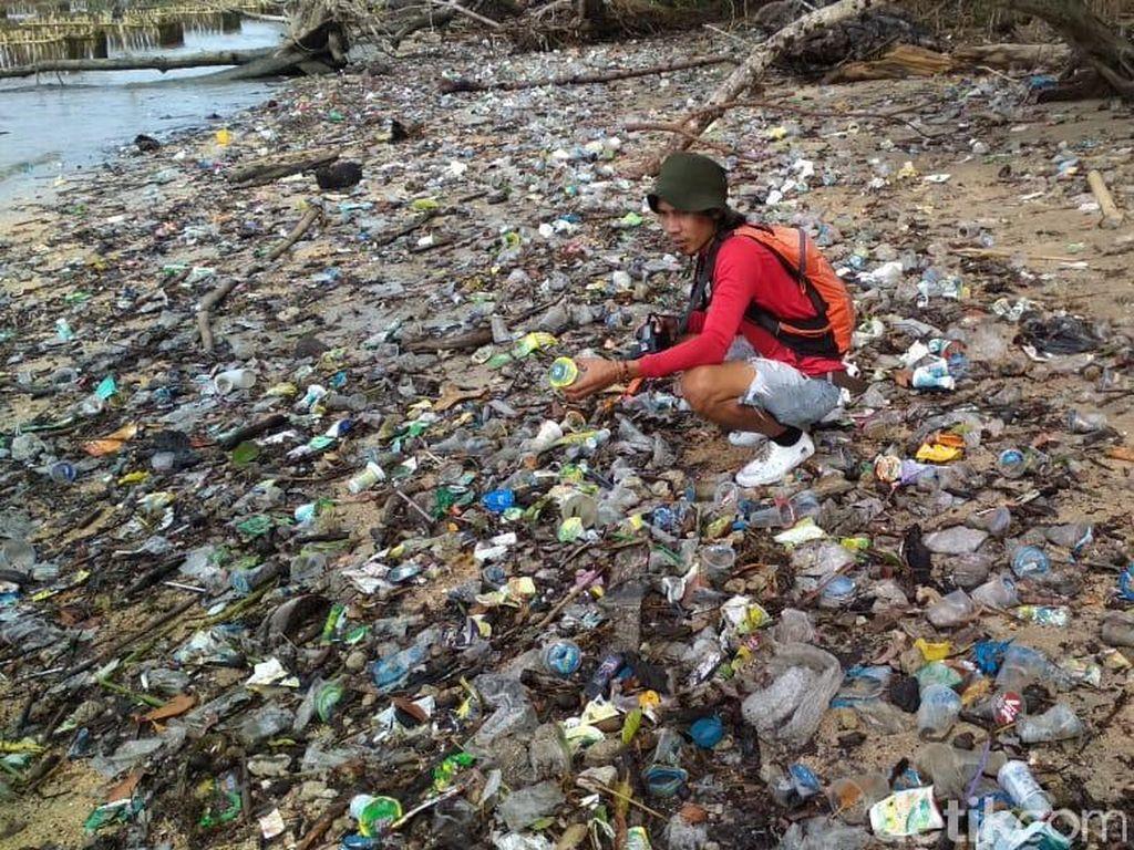 Pantai Ujung Kulon Dipenuhi Sampah, Habitat Penyu-Dugong Terancam