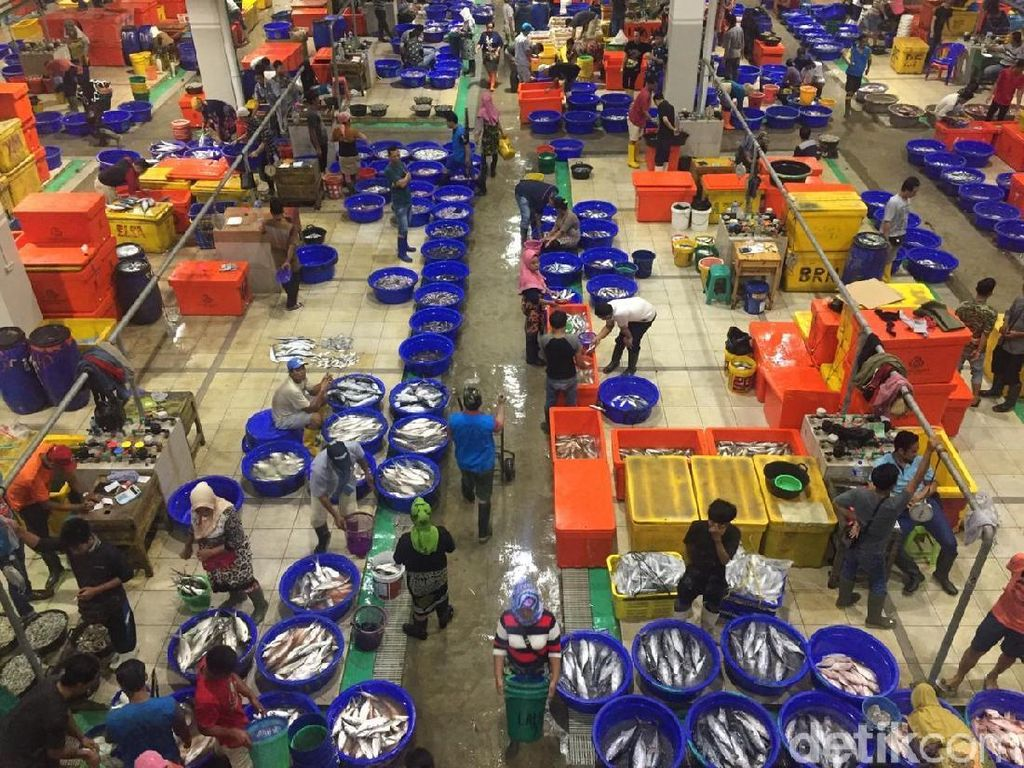 Video: Pasar ikan modern Muara Baru, Tsukiji Market Rasa Lokal