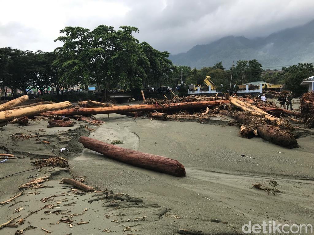 BNPB: Gunung Cycloop Jayapura Dirusak Jadi Permukiman