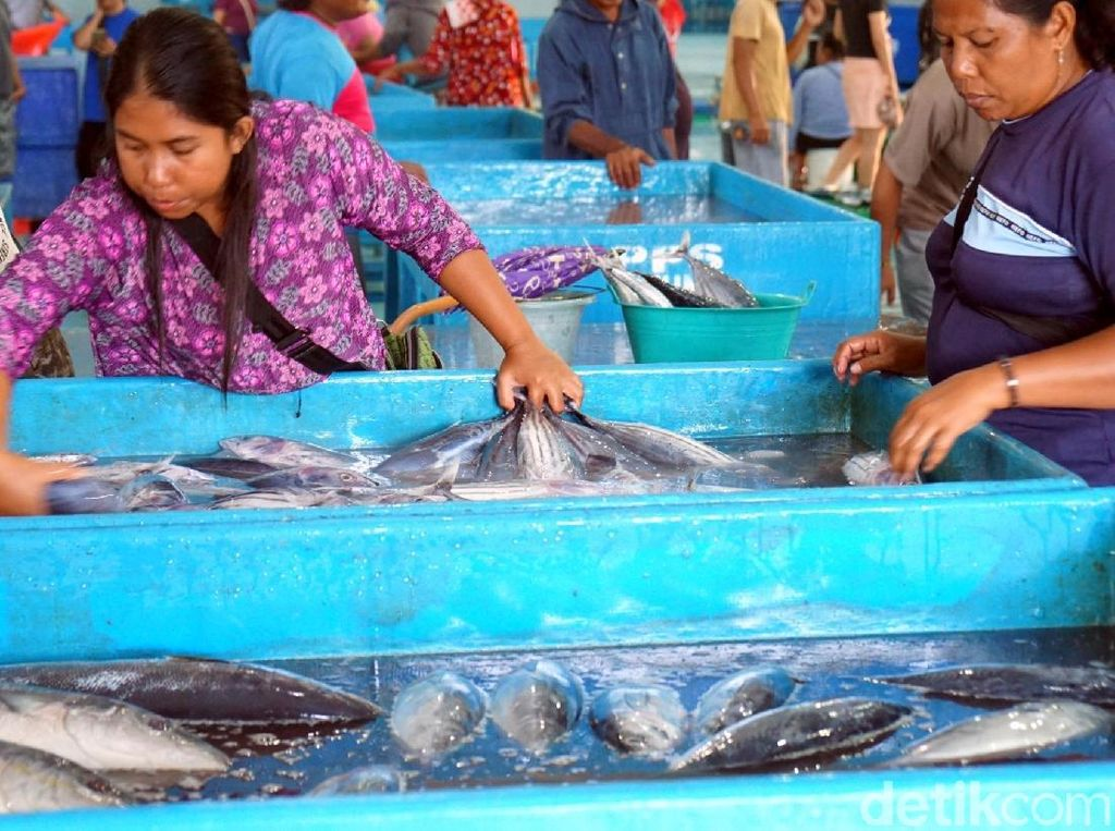Tak Kalah dengan Tsukiji, Ini Pasar Ikan Higienis Bitung