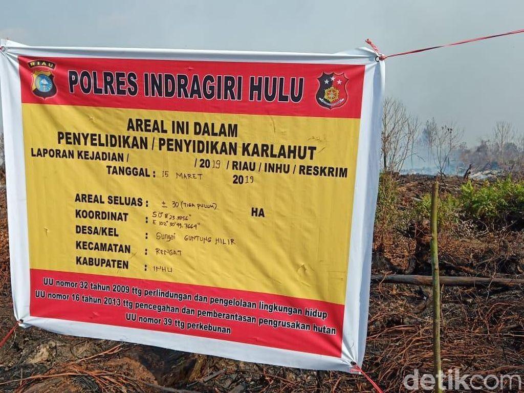 Lahan Tidur Milik Perusahaan Sawit di Riau Terbakar