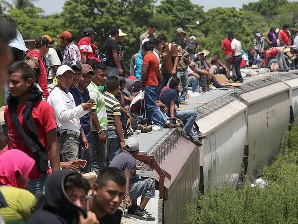 Negara-negara Mana Saja yang Paling Banyak Menampung Imigran?