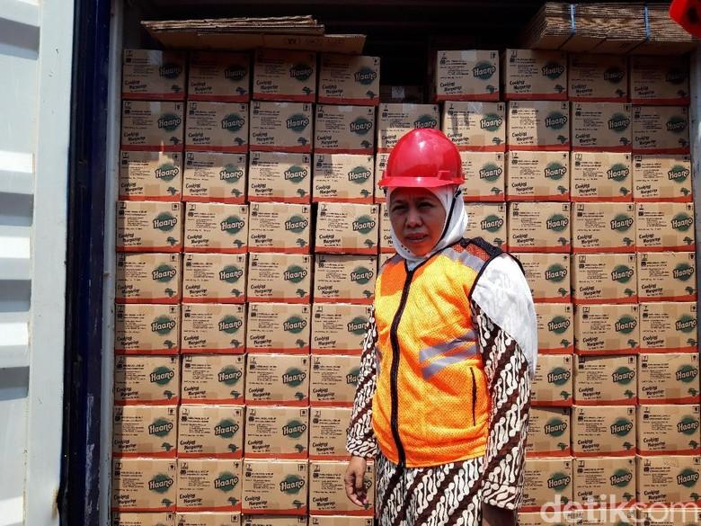 Produk Pertanian Jatim Rp 28 M Diekspor, Mulai Daun Kelor Hingga Sarang Walet