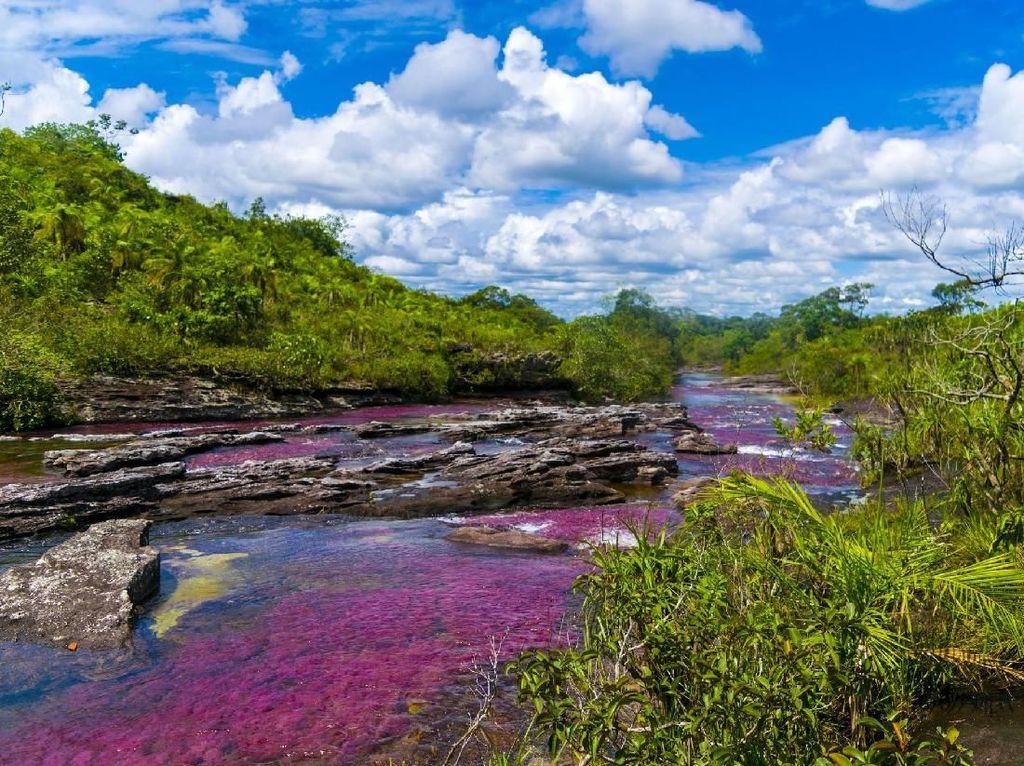 Inilah Sungai Paling Cantik di Dunia