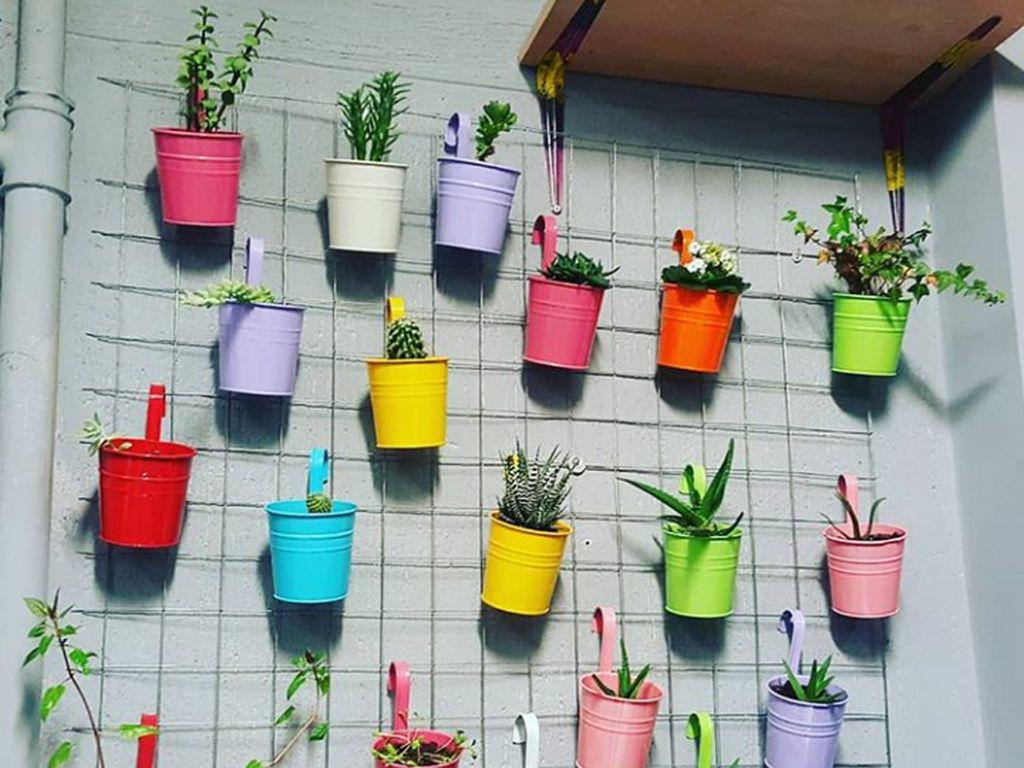 7 Tips Mempercantik Rumah dengan Kebun Vertikal yang Simpel