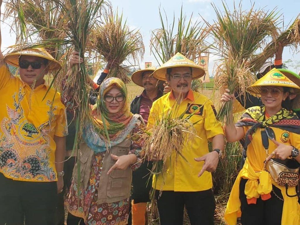 Happy Banget Nih! Mayangsari Turun ke Sawah Bareng Keluarga Cendana