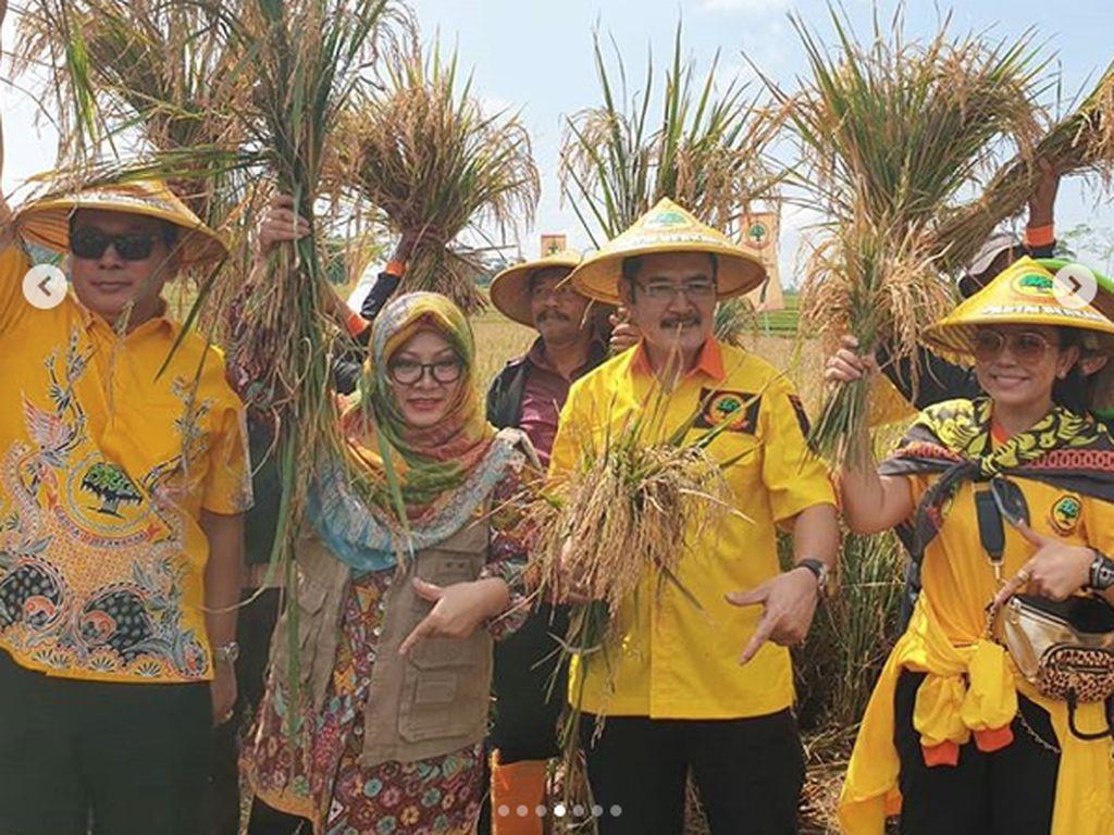 Wajah Happy Mayangsari saat Turun ke Sawah