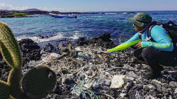 Bumi yang Kian Tak Lestari Akibat Sampah Pembalut