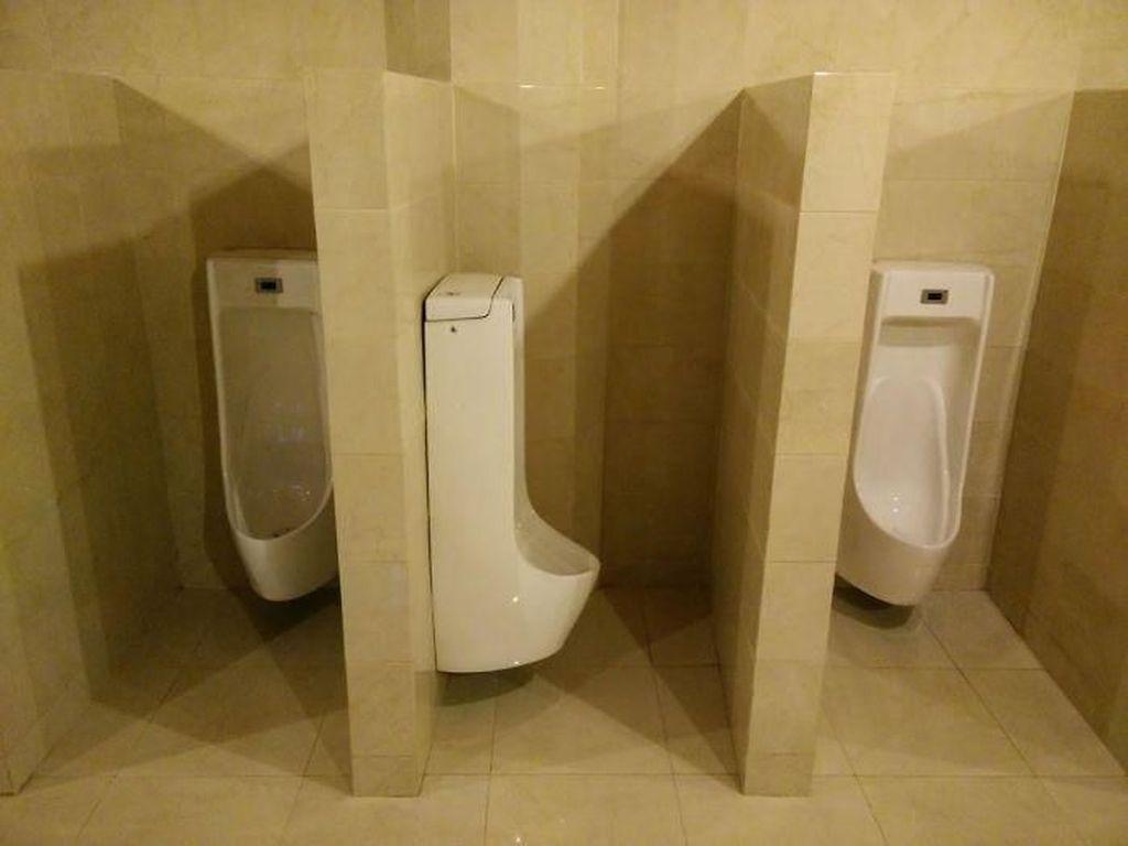 Ini Toilet Paling Ngaco Sejagad Raya
