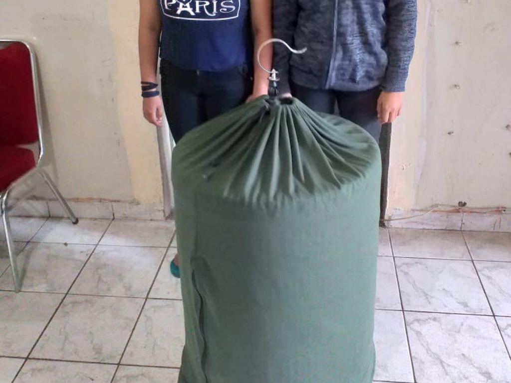 Pencurian Burung Murai oleh 2 ABG Perempuan di Tangerang Berakhir Damai