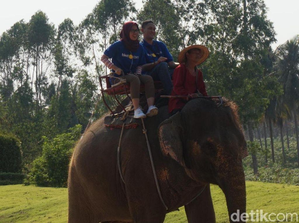 Liburan Bersama Keluarga di Pattaya, Kunjungi Taman Rekreasi Ini
