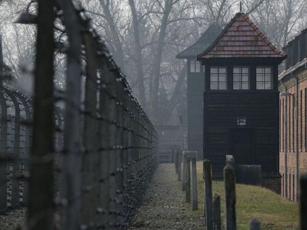 Kisah Ahli Kimia Keturunan Yahudi yang Selamat dari Kekejaman Nazi