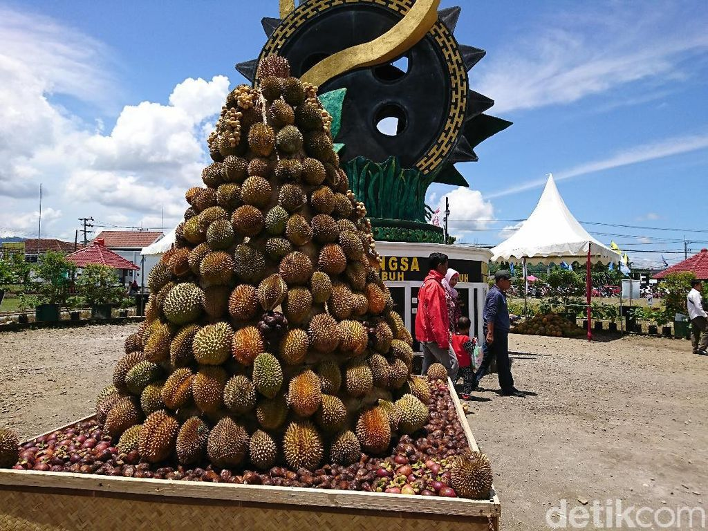 Cari Varietas Unggul, Trenggalek Gelar Kontes Durian
