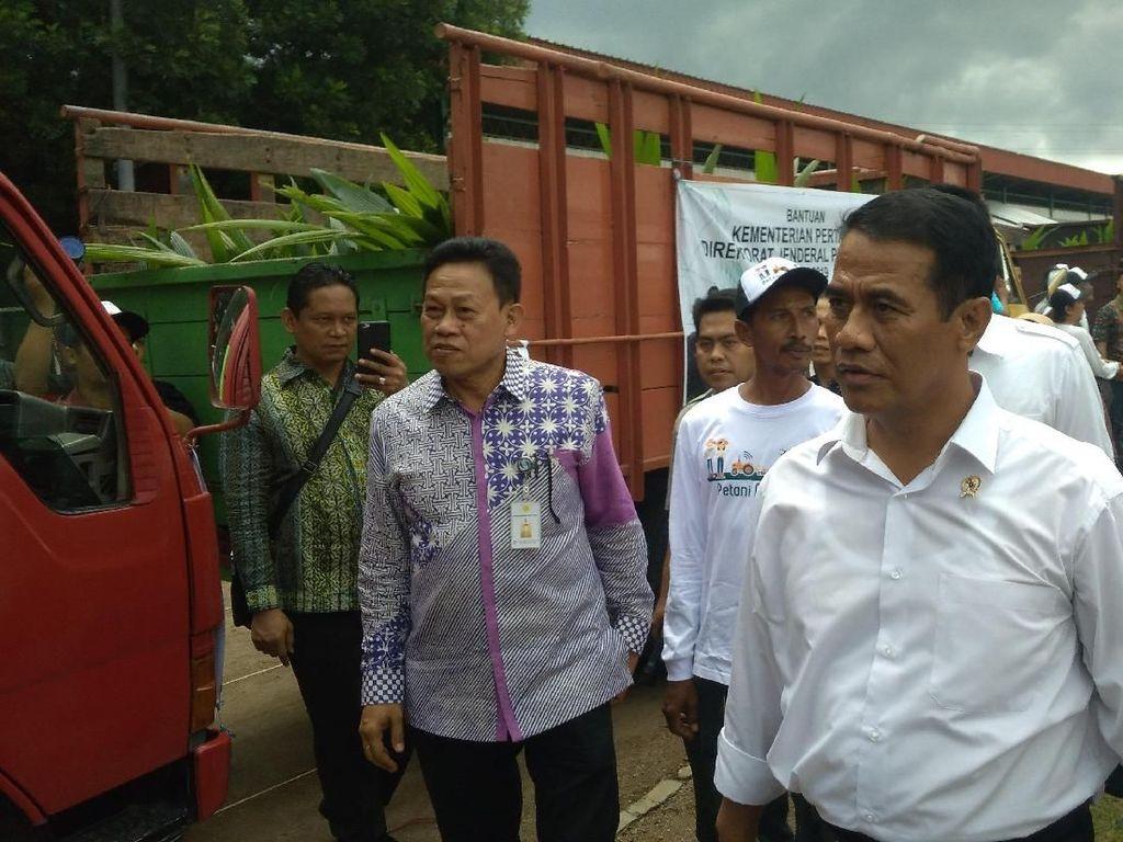 RI Ekspor 70.000 Ton Bawang Merah ke Thailand hingga India
