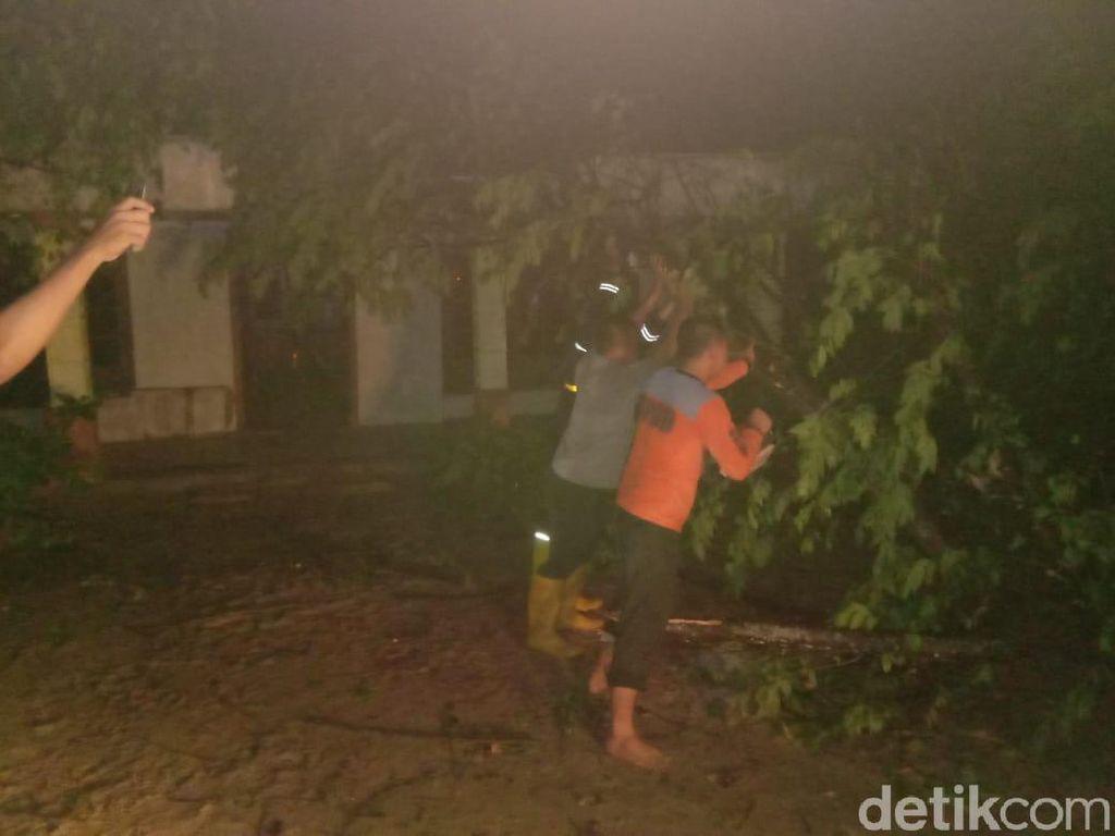 Puting Beliung Rusak Rumah dan Tumbangkan Puluhan Pohon di Bojonegoro