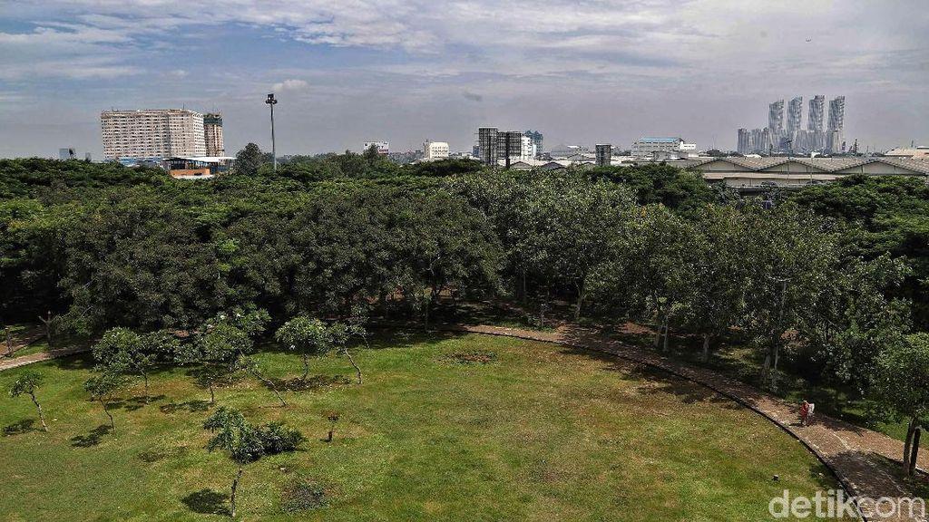 Asrinya Taman Hutan Kota di Utara Jakarta