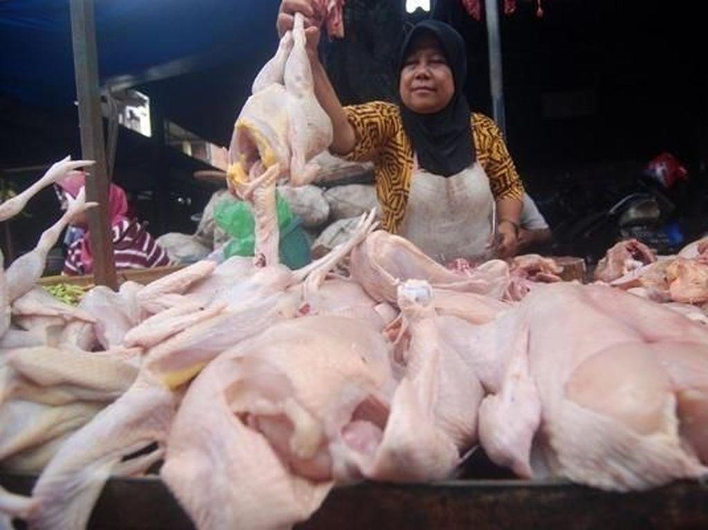 Harga Ayam Anjlok, Kementan Minta Kampanyekan Konsumsi Daging Ayam